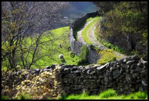 On the way up Hoad Hill by St0DaD