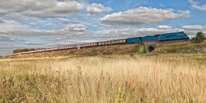 4492 Climbing the Embankment by wildbunchz
