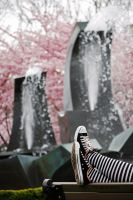 Converse at the Park II by dislexicpalindrome