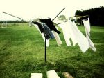 laundry by enspire