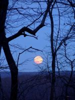 Lune rise 1 by InKibus