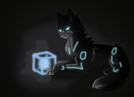 AT: Hideo and the Mystery Cube by HermiTheHusky