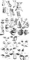 02-03-2015 Facial Feature Studies by Makkon