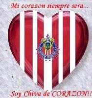 Chiva de Corazon by club-chivas