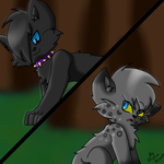 scourge and ashfur by nyan-scourge