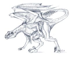 Dragon Raptor Sketch by suzidragonlady