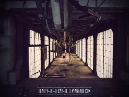 Rusk factory 19 by Beauty-of-Decay-de