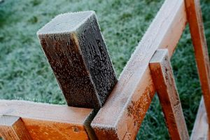 Growing Frost. by Jane-Rt