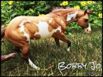 *Bobby Jo*! by Lexykentucky