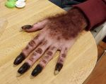 Quick and dirty werewolf hand by toberkitty