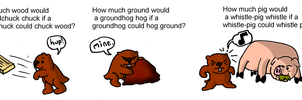 Woodchucks, groundhogs and whistle-pigs by mortimermcmirestinks