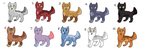 extremely cheap adopts open-20 points each by Itraka