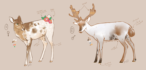spotty deer auction CLOSED by padarii