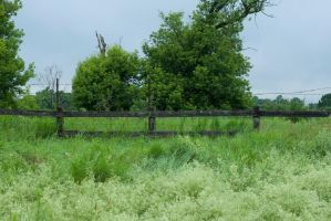 Old Fence Stock by Snowenne