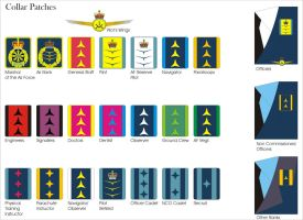 Aquilaan Air Force Collar Patches and Wings by Ienkoron