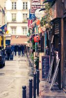 Paris street by StefanyKK