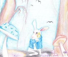 alice in wonderland by expectatinqs