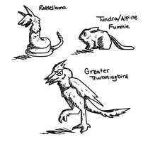 3 Falbirian Animals by DragonarySilver