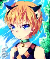 SPEEDPAINT + Neko Tsundere Boy by deaeru