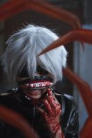 Kaneki Ken by nickcorner