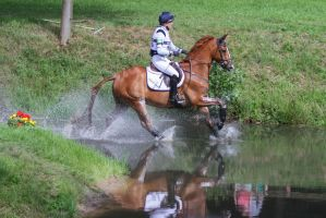 3DE Cross Country Stock Trough the Water by LuDa-Stock