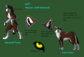 New Persona Wolf Reference Sheet by WolfOfTheMoons