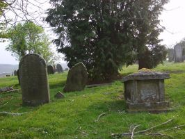 Nightstock 1156 by Nightstock