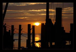 Pilings by amhaley