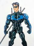 Nightwing by nightwing992000