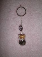 Mini cookie jar keyring by ilikeshiniesfakery