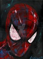 Amazing Spiderman 3 by vanouka