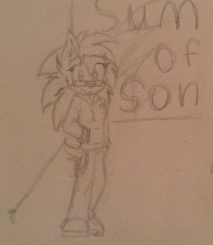 (RQ) At Summer Of Sonic by xSonadowLover103x