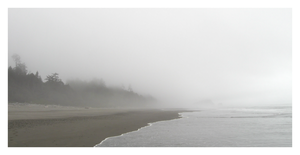 Foggy Coast by White-pine