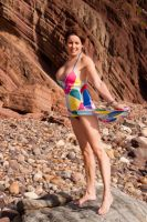Multi Coloured Dress 4 by didspix