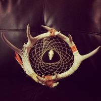 antler dreamcatcher bat skull by inkednativedesigns