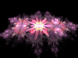 pink flower creation by Andrea1981G
