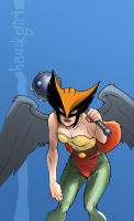 Hawkgirl 01 by hinterscheid