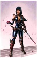 Cultivating a Ninja Girl by SirTiefling