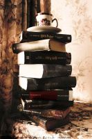 Book Castle by Ilman-Lintu