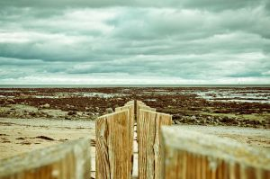 Alnmouth Beach III by scribbleXcore