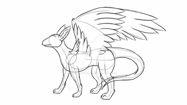 Dutch Angel Dragon Anatomy [Study] by iamontda