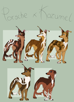 Porsche x Kozumel litter [CLOSED] by blackunia