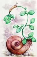 Secret Garden of a Snail by LaNaYoung