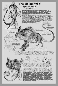 Morgul Wolf Species Guide by AnyaBoz