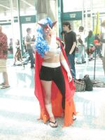 Anime Expo 2013 529 by iancinerate