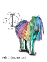 Regenbogenshetty by Myhorseismylife