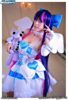 panty and  Stocking with Gartenbelt  cosplay by Sakurith