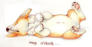 Nap 'O Clock by StudioPsycho