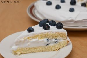 Blueberry cake 2 by patchow