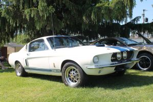'67 Shelby - This Car Rips! by SwiftysGarage